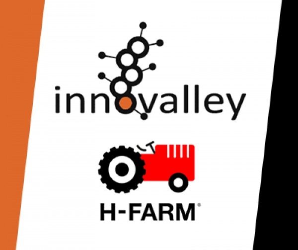 Digital Transformation Manager Program - H-Farm 4 Innovalley
